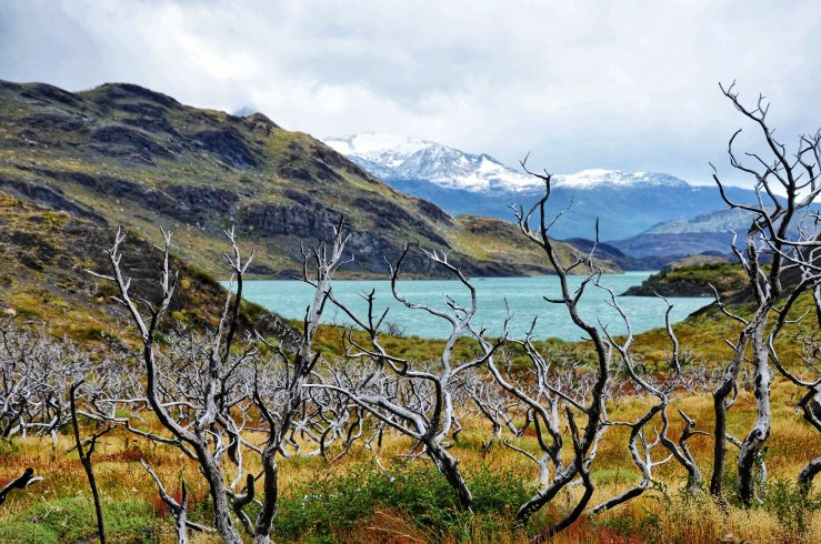 blog review Torres del Paine National Park